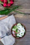 Składniki dla witaminy wiosny sałatki: zielona cebula, rzodkiew, ogórek, kwaśna śmietanka Zdjęcie Stock