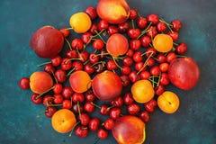 Składu lata owoc jagod Słodkich wiśni nektaryn Dojrzałych Organicznie morel Wibrujący kolory na zmroku - błękitny tło Fotografia Royalty Free