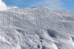 Skłon dla freeride z śladami od nart i snowboards Obraz Stock