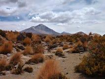 Skłony wokoło wulkanu isluga przy chilean altiplano Zdjęcia Royalty Free
