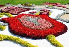 składów kwiatu czerepów Kiev przedstawienie Zdjęcia Royalty Free