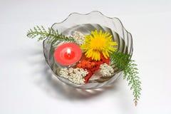 skład kwiat Fotografia Royalty Free