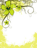 skład kwiat Fotografia Stock