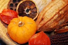 skład rzeczy jesieni Zdjęcia Stock
