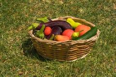 Skład z warzywami w koszu Obrazy Stock