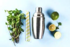 Składniki dla mojito lub lemoniady koktajlu Fotografia Stock