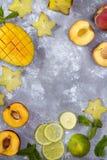 Składniki dla owoc lata napojów Fotografia Royalty Free