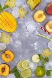 Składniki dla owoc lata napojów Obraz Stock