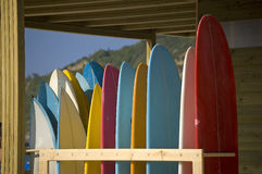 składowych czynszu deski surfingowe Obrazy Royalty Free