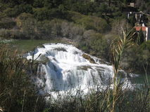 składu natury rzeki wiosna Fotografia Stock