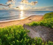 składu trawy zielonego morza nieba zmierzch Obrazy Stock