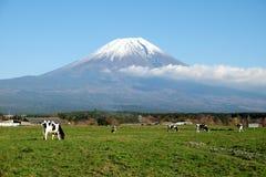 Sk?nheten av Mount Fuji fotografering för bildbyråer