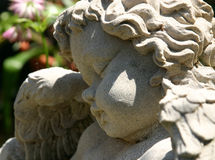 skała aniołku zdjęcia royalty free