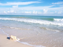 skała brzegu plaży Fotografia Stock