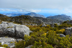 Skała i krajobraz na górze Stołowej góry, Kapsztad Obrazy Stock
