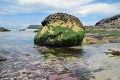 Skała na plaży Fotografia Stock