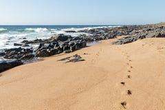 Skała odcisków stopy fala Przeciw Błękitnej linii horyzontu i ocean Zdjęcie Stock
