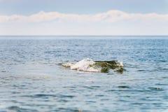 skała pod wodą obrazy stock
