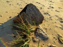 Skała w piasku na plaży Obraz Stock