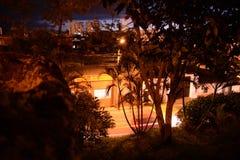 Skały, drzewa i światła, zdjęcie royalty free