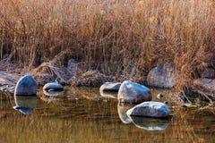 Skały i prarie trawa w spokojnym środowisku zdjęcie stock