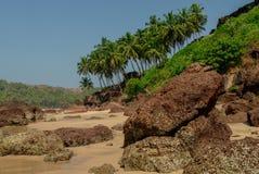 Skały na chowanej plaży z palmami blisko Agonda plaży, Goa stan, I Fotografia Royalty Free