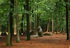 Skały na lesie obraz stock