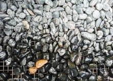 skały na podłoga Zdjęcie Royalty Free
