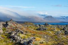 Skały na wybrzeżu fjord na Iceland Zdjęcia Stock