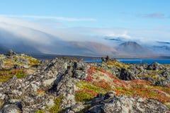 Skały na wybrzeżu fjord na Iceland Fotografia Royalty Free