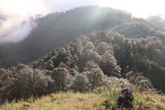 Skały, wzgórza i greenery, obraz royalty free