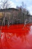 Skażenie wody kopalni złota eksploatacja w Rosia Montana, Ro Obraz Stock