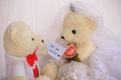 Ska du att gifta sig mig bakgrund som gifta sig studiobegrepp Royaltyfri Fotografi