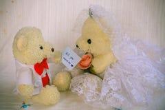 Ska du att gifta sig mig bakgrund som gifta sig studiobegrepp Royaltyfri Foto