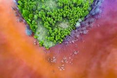 Ska?ony jezioro przy Geamana, Rumunia zdjęcia royalty free