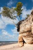Skała przy seashore Fotografia Royalty Free