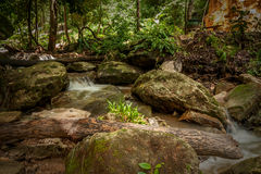 Skały i siklawa w lesie Zdjęcia Royalty Free