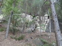 Skały w lesie Fotografia Stock