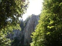 Skały w lesie Obrazy Royalty Free