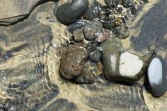 Skały w mokrym piasku Zdjęcia Stock