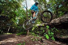 Skacze i lata na rowerze górskim w lesie Obraz Stock