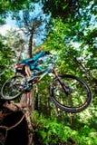 Skacze i lata na rowerze górskim w lesie Zdjęcie Royalty Free
