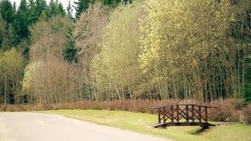 Skacze miesiąc Kwiecień, drewniany most przez wąwozów prowadzenia w parka HD zbiory