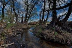 Skacze na rzekach park narodowy Bayanaul Obrazy Royalty Free