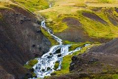 Skacze w Reykjadalur Gorących wiosen terenie, Iceland Obraz Royalty Free