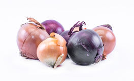Skład fiołka - błękitne i ocher cebule na białym tle Fotografia Stock