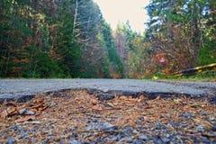 Skada för hål för asfaltväg arkivbild