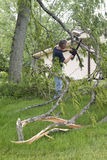 Skada för trombvindstorm, besegrat träd för man Chainsaw arkivfoto