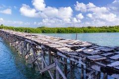 Skadad övergiven bro Royaltyfri Fotografi