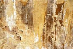 Skadad murbruk Fotografering för Bildbyråer